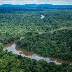 Presidente sanciona, com vetos, a Política Nacional de Pagamento por Serviços Ambientais